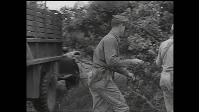 various views of soldiers laying telephone cables in the field with trucks and tying cable to trees - 1940 1949 video stock e b–roll