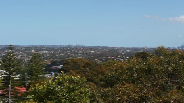 Various views of the city skyline stands in the background as residential buildings sit among trees in the Northern Beaches area of Sydney Australia...