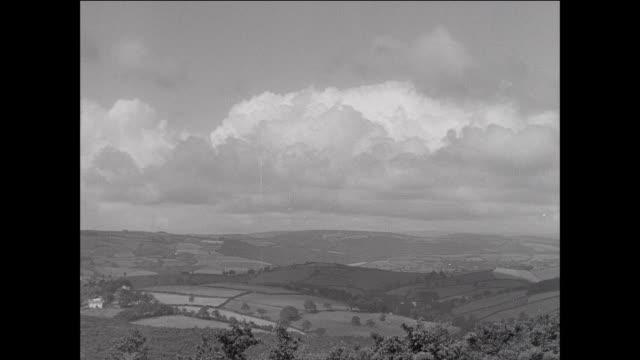 montage vast countryside fields and hills on sheep farm / aberystwyth, wales - aberystwyth stock videos & royalty-free footage