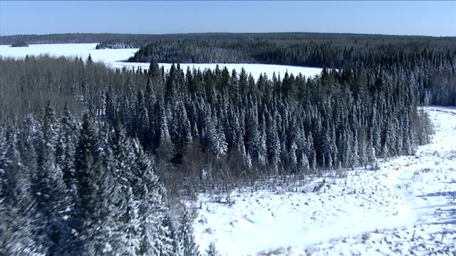 vast evergreen forests surround frozen lakes and rivers in northern canada. available in hd. - boreal forest stock videos & royalty-free footage