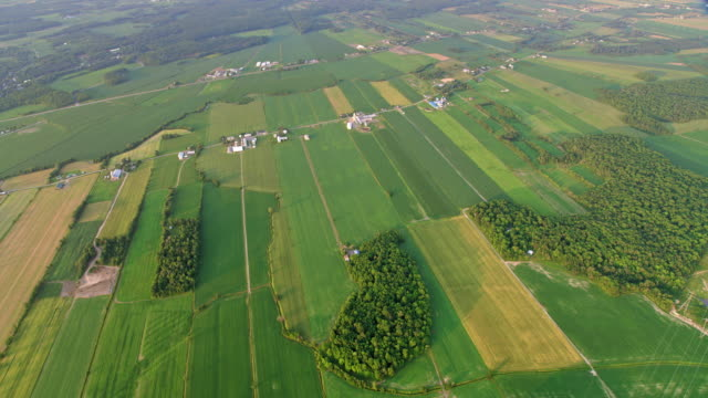 aerial vast fields and farms in quebec, canada - canada stock videos & royalty-free footage