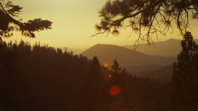 vast forests at sunset of the yosemite national park, california - yosemite national park stock videos and b-roll footage