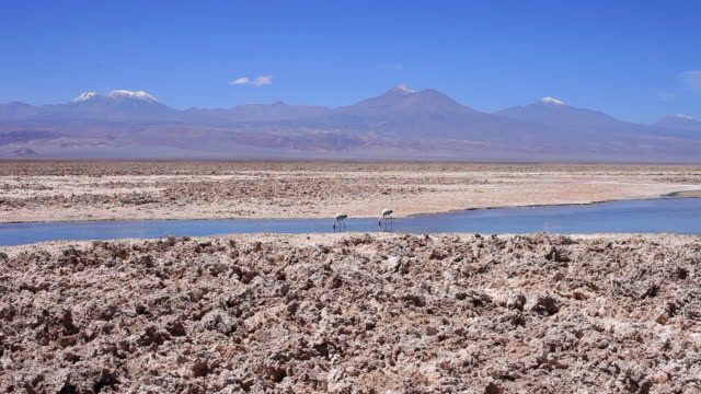 ws vast landscape with blue sky dark brown mountains and blue shallow river in middle where 2 flamingos feed and light brown rocky terrain in ground - travelling light stock videos & royalty-free footage