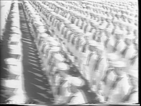 vast number of sailors stand at attention in rows / several large battleships float in new york city harbor - festivalsflotte bildbanksvideor och videomaterial från bakom kulisserna