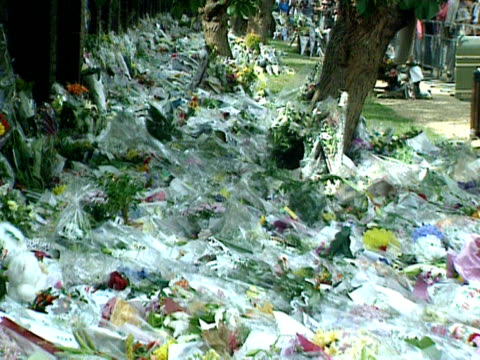 a vast swath of floral tributes for diana princess of wales line the walls of kensington palace 01 september 1997 - kensington palace video stock e b–roll