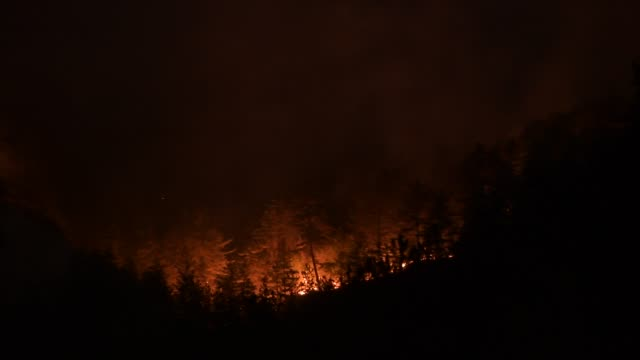 ITA: Forest fires in Central Italy