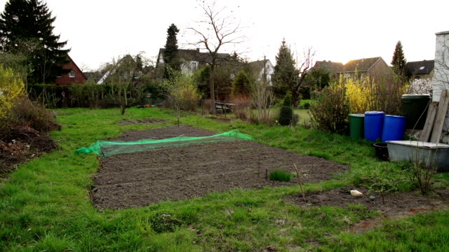 CRANE UP: Vegetable Garden
