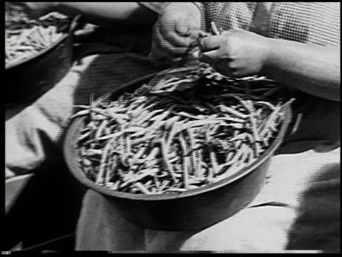 vídeos y material grabado en eventos de stock de vegetable gardening - 9 of 13 - vea otros clips de este rodaje 2512