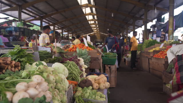 vegetable market stall at colombo, sri lanka - newly industrialized country stock videos and b-roll footage