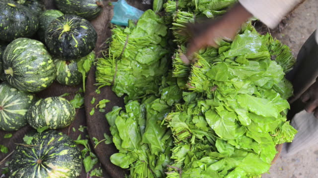CU Vegetable store vendor adjusting spinach at market / Gurgaon, Haryana, India