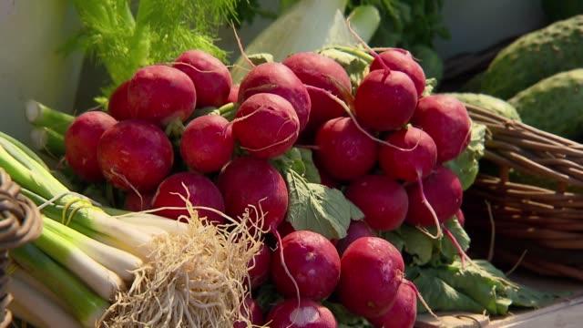 vidéos et rushes de vegetables and herbs on stall - radis
