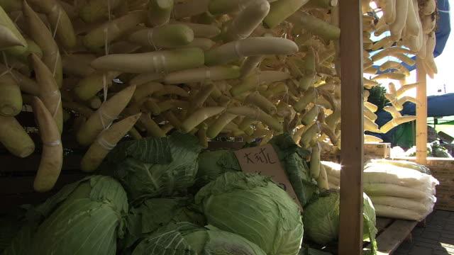 stockvideo's en b-roll-footage met vegetables for pickles, hokkaido, japan - crucifers