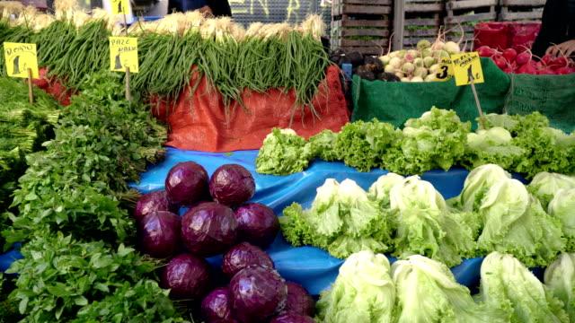 vegetables on farmer's market - aubergine stock videos & royalty-free footage