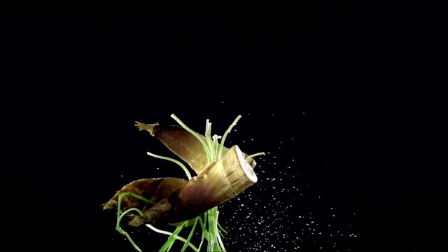 vegetables rolling across a black background - olive fruit stock videos and b-roll footage