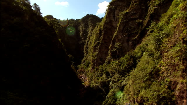 vegetation grows on the walls of a deep gorge in the el yunque national forest. - 国有林点の映像素材/bロール