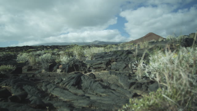 vegetation moves in wind, igneous rock, sky, clouds, el hierro, canary islands, november 2011 - igneous stock videos & royalty-free footage