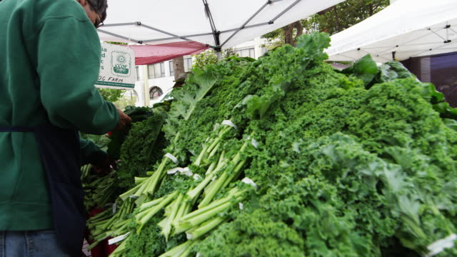 vegitables at an open market in san francisco - kale stock videos and b-roll footage