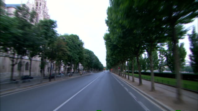 a vehicle drives down a tree-lined street and stops at a red light. - fermo video stock e b–roll