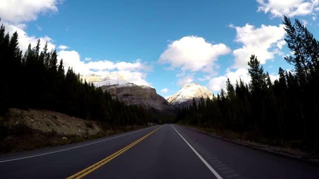 POV vehicle driving on scenic road
