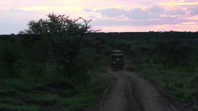 vehicle enters road at dawn, drives away - wiese video stock e b–roll