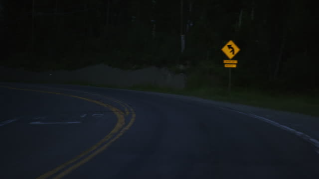 vehicle point of view of driving along a treelined road in the mountains at night - fanale anteriore video stock e b–roll