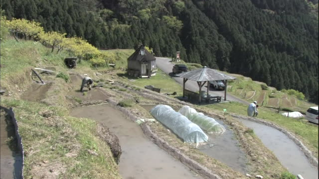vehicles pass the maruyama senmaida rice terraces where farmers plant rice seedlings. - sedan stock videos & royalty-free footage