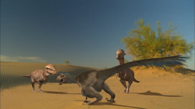 cgi, ms, velociraptor surrounded by dinosaurs on sand dune - paleozoology stock videos and b-roll footage