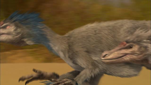 CGI, CU, PAN, Velociraptors running on sand dune