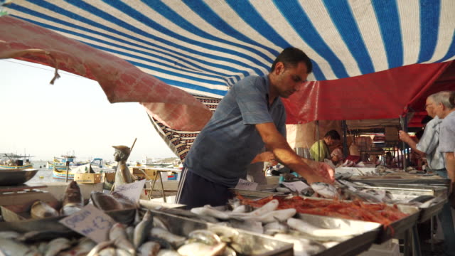 vendor at fish market in malta - fish market stock videos & royalty-free footage