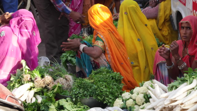 vendor in colourful saris selling vegetables at pushkar mela fair it comes alive with vibrant folk music and dances horse and camel races religious... - religious music stock videos and b-roll footage