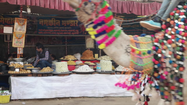 vendor selling sweets and savoury food snacks at pushkar mela festival with vibrant folk music and dances horse and camel races religious bathing and... - savoury food stock videos & royalty-free footage