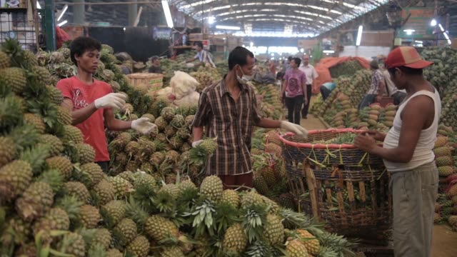 vendors arrange pineapples into a pile at the pasar induk kramat jati market in jakarta, indonesia, on sunday, june 21 close shot, a pile of... - tropical fruit stock videos & royalty-free footage