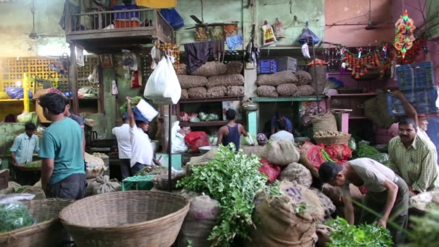 vendors arrange vegetables at dadar vegetable wholesale market in mumbai india on saturday nov 19 a vendor tosses long green chillies from a basket a... - gourd stock videos and b-roll footage