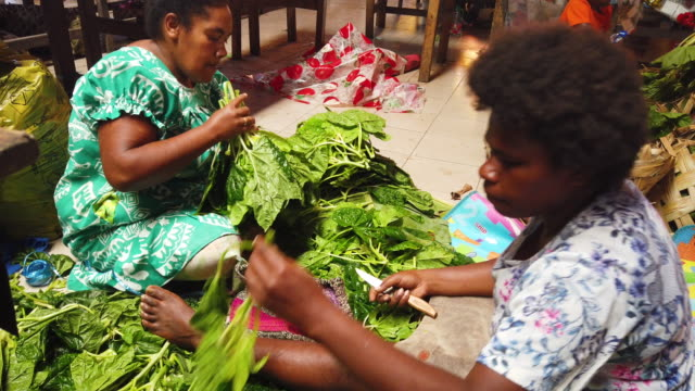 vidéos et rushes de vendors prepare bundles of cabbage at the port vila central market on november 30 2019 in port vila vanuatu 25 percent of vanuatu's 276000 citizens... - océan pacifique sud