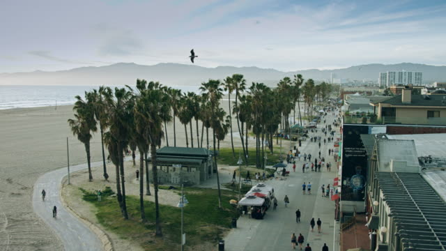 venice beach evening - カリフォルニア州 ベニス点の映像素材/bロール