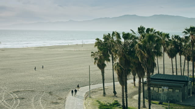 venice beach from above - southern california stock videos & royalty-free footage