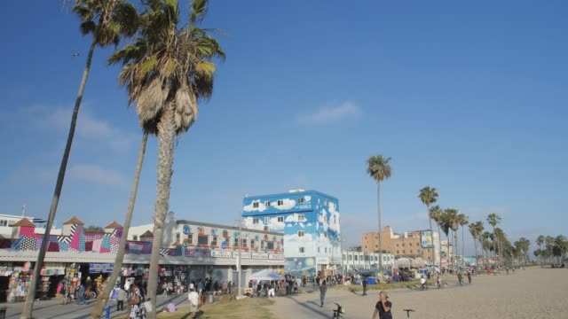 venice beach, sant monica, los angeles, la, california, usa, north america - western usa stock videos & royalty-free footage