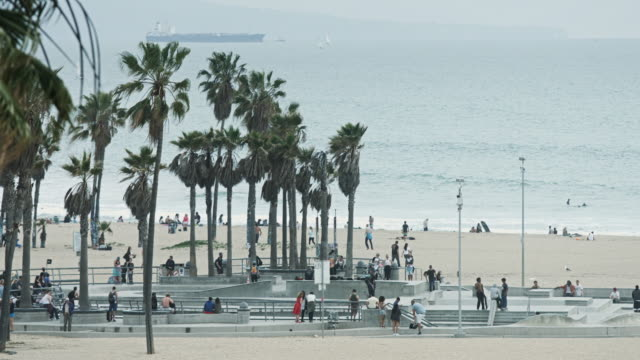venice beach skate park - promenade stock videos & royalty-free footage