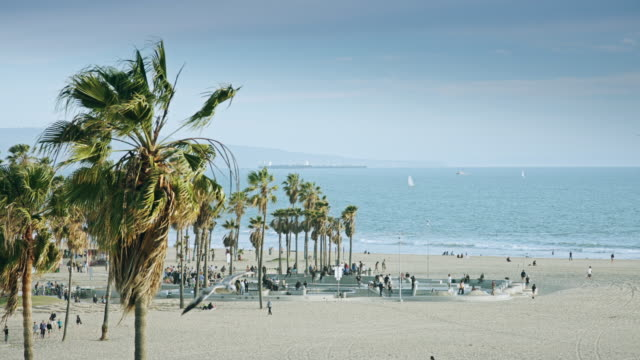 venice beach - promenade stock videos & royalty-free footage