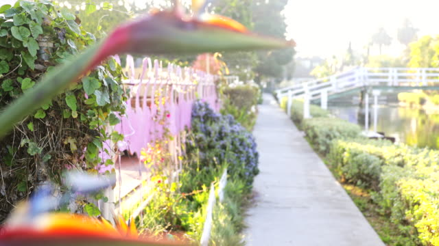 venice canals - canal stock videos & royalty-free footage