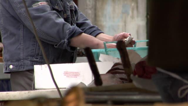 Venice - Rialto fish market