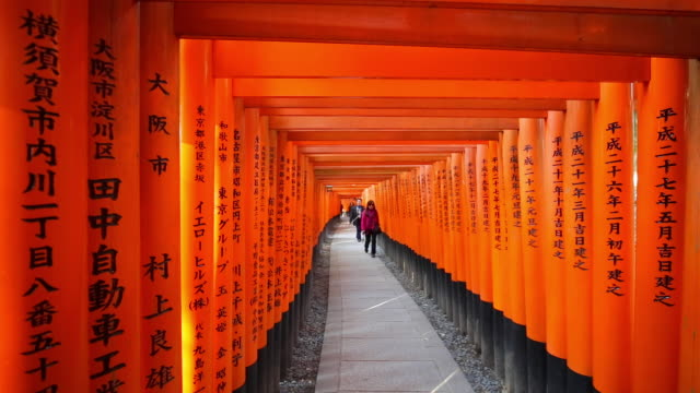 vermilion colored torii gates of fushimi inari shrine, kyoto, kansai prefecture, honshu, japan - orange colour stock videos & royalty-free footage
