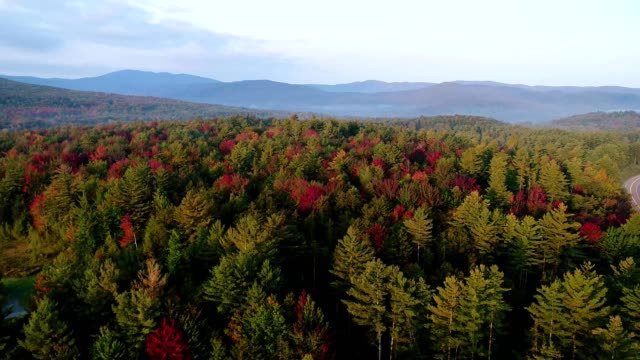 vermont countryside fall foliage - vermont stock videos & royalty-free footage