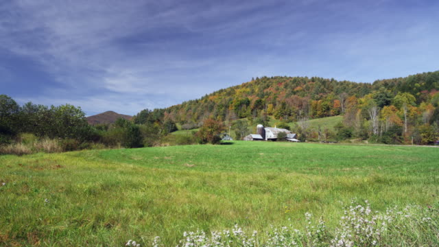 vídeos de stock e filmes b-roll de vermont farm in the autumn with grass and trees - parado