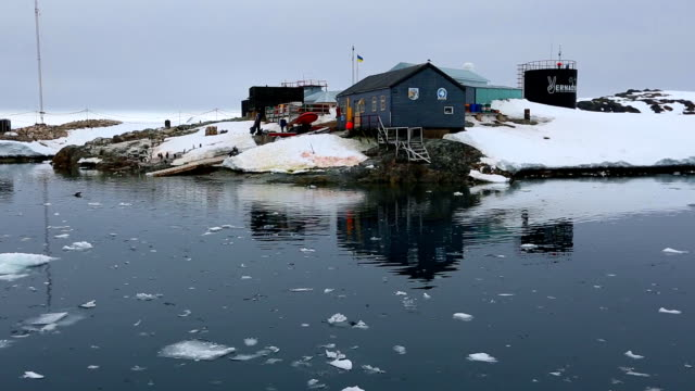 vernadsky research base on galindez island in antarctica - ice floe stock videos & royalty-free footage