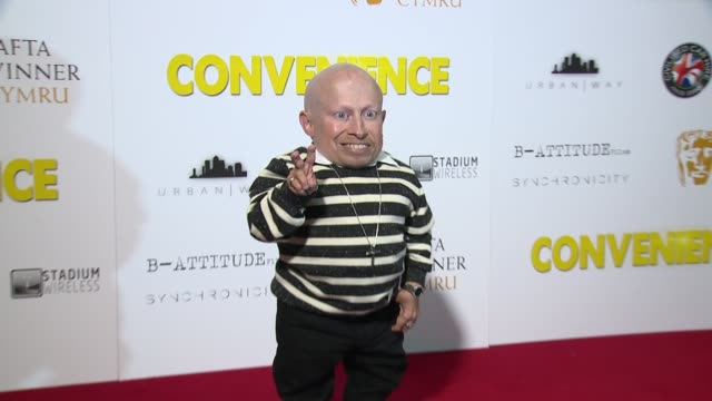 verne troyer, alex macqueen at curzon soho on september 21, 2015 in london, england. - verne troyer stock videos & royalty-free footage