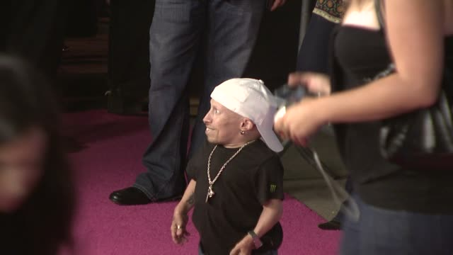 verne troyer at the t-mobile sidekick lx tony hawk edition launch at los angeles ca. - verne troyer stock videos & royalty-free footage
