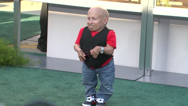 verne troyer at the 'zookeeper' los angeles premiere at westwood ca - verne troyer stock videos & royalty-free footage
