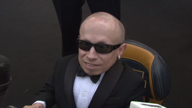 verne troyer on why he's at this event. at the cannes film festival 2009: amfar red carpet at antibes . - verne troyer stock videos & royalty-free footage