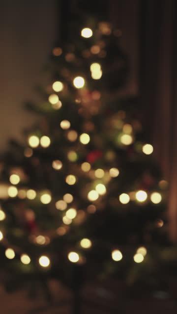 vertical defocused shot of twinkling christmas tree - pine tree stock videos & royalty-free footage